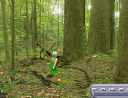 ANIMAL HUNT GAME,CLASSICE GAMES,OLD GAMES
